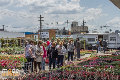 48th Flower Day at Eastern Market Sunday, May 18th